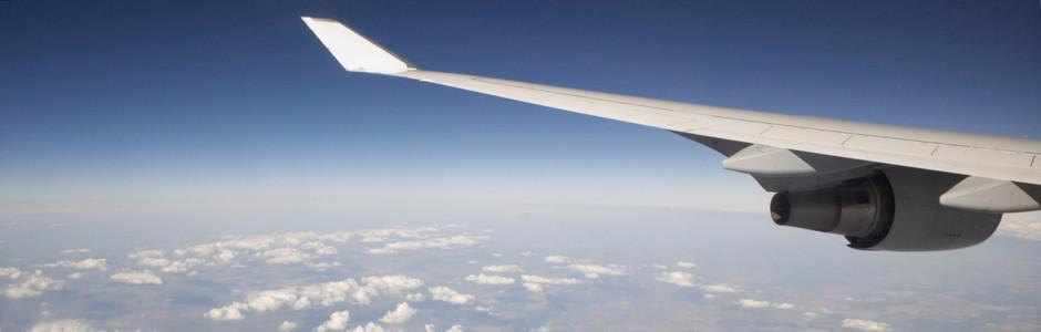 Bettwanzen bekämpfen im Flugzeug